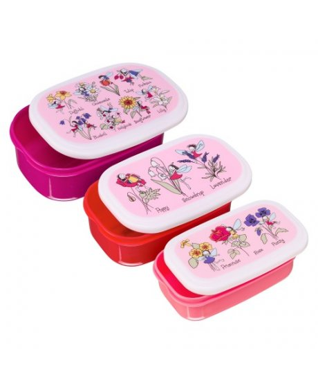 flower fairies snackbox tyrrell katz
