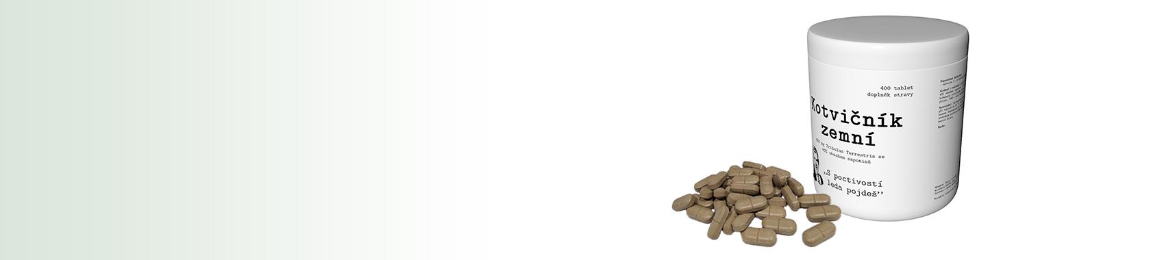 Kotvičník zemní