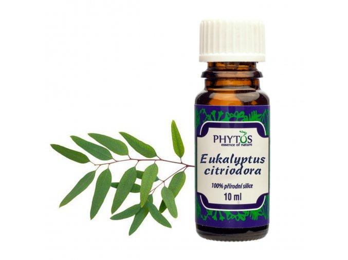 Eukalyptus citriodora