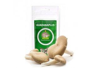 hliva capsules exotic herbs