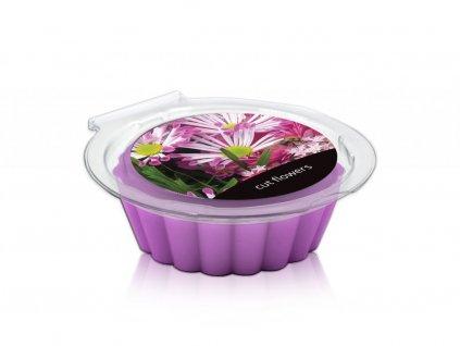 11277 2 0001 aroma vosky v plastove krabicce cut flow 002