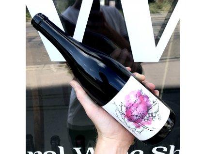 Vajčner - Weinschnitt Zweigeltrebe 2020