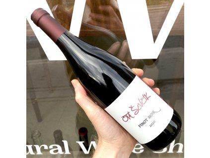 Ota Ševčík - Pinot Noir 2020