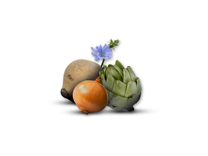 optimize your gut health with prebiotics like inulin 3