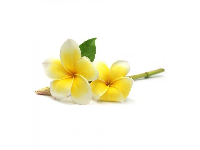 biopark cosmetics organic frangipani plumeria hydrosol 100 ml 721661 en