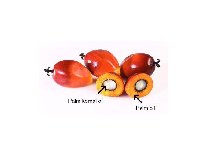 Palmový olej RSPO