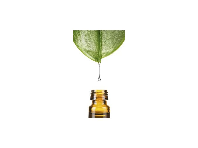 Back2Life Homeopathy Leaf Bottle