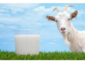 Kozí mléko sušené 50g