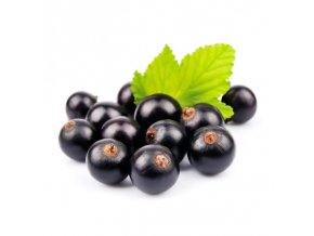 BLACKCURRANT SEED 800x800