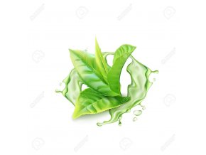 128524505 realistic green tea branch with water splash vector illustration