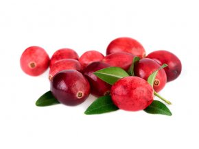 Cranberrysamenoel