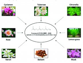 Various natural sources of farnesol