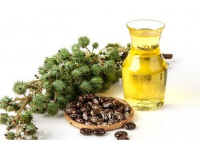 Castor Oil A Brief