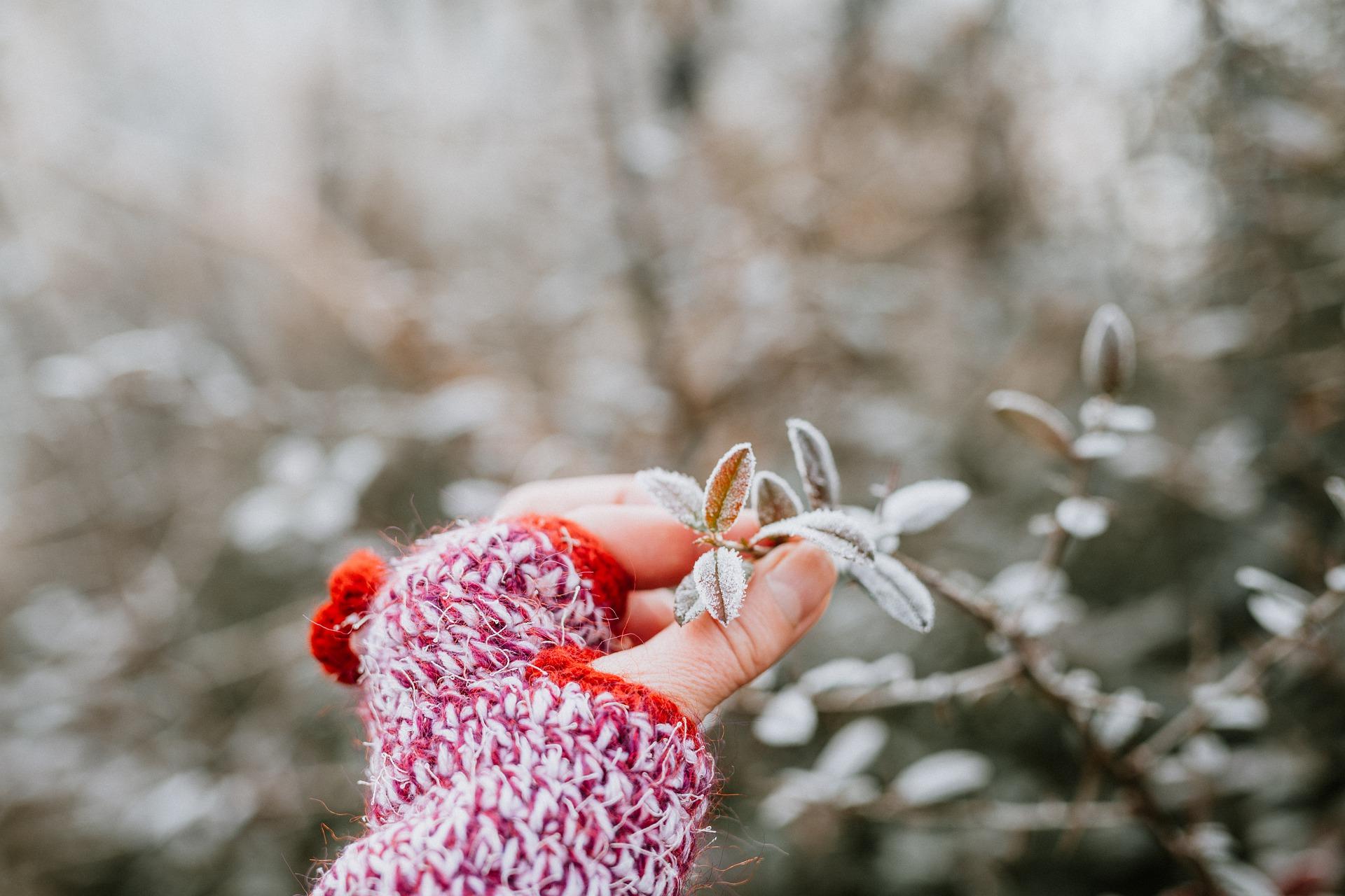 Jak naše pokožka reaguje na zimu a mráz?