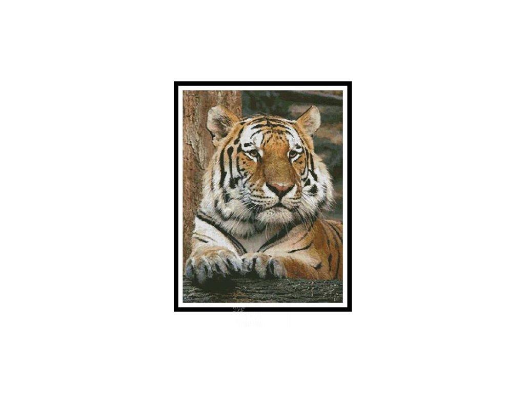 IC2791-10384 Bengal Tiger 4 (Aida 18ct)