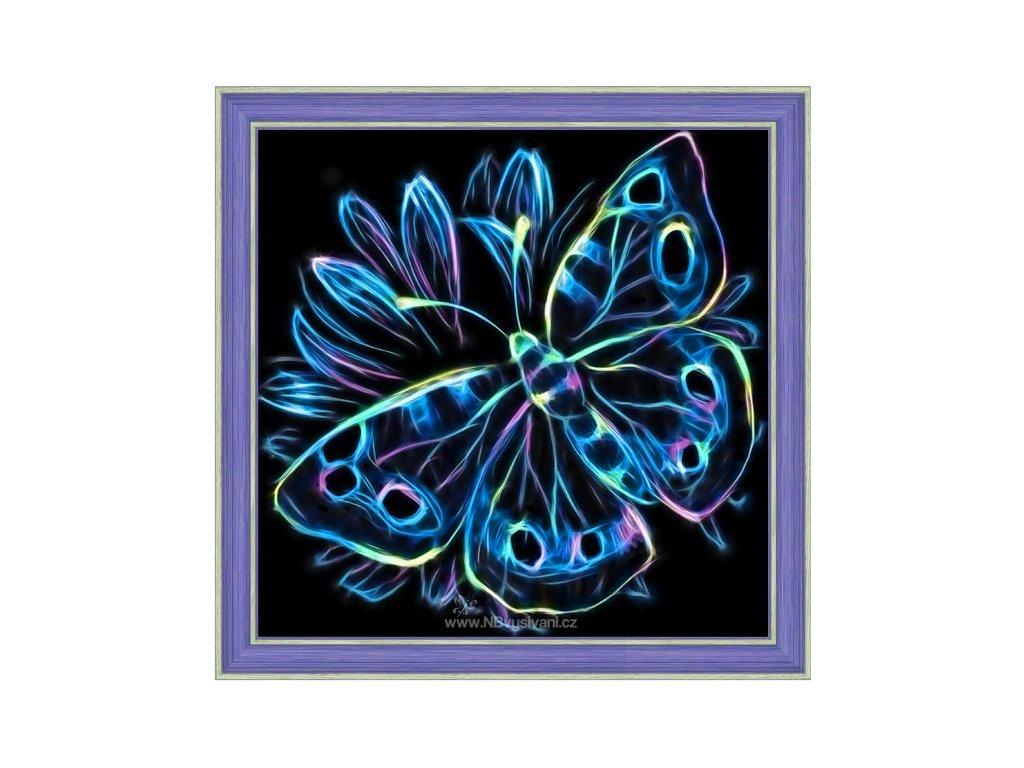 AZDP-1713 Neonový motýl