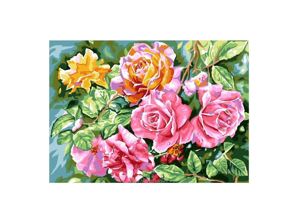 GR-12314 Skvostné růže
