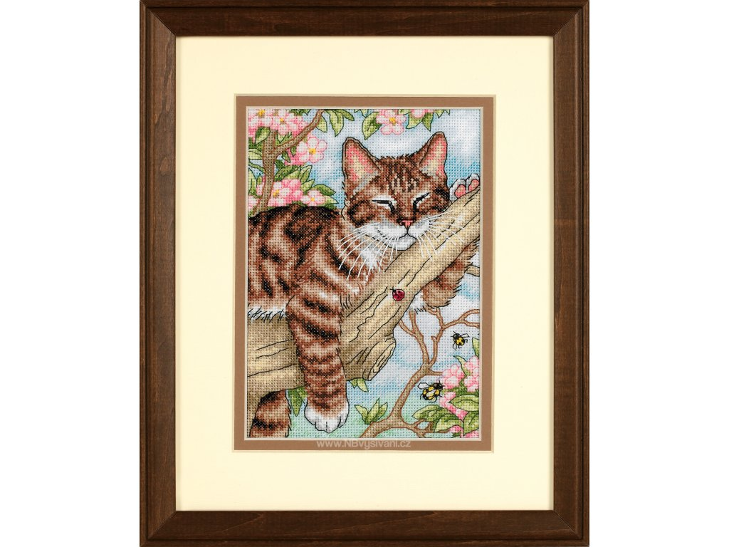 65090 Napping Kitten - Kočičí podřimování