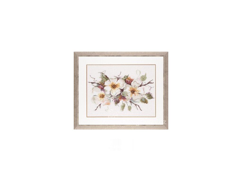 L-PN0008051(34932) Jabloňové květy