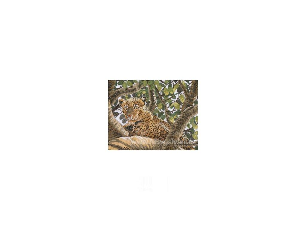 L38002A Leopard ze Serengeti (doprodej)