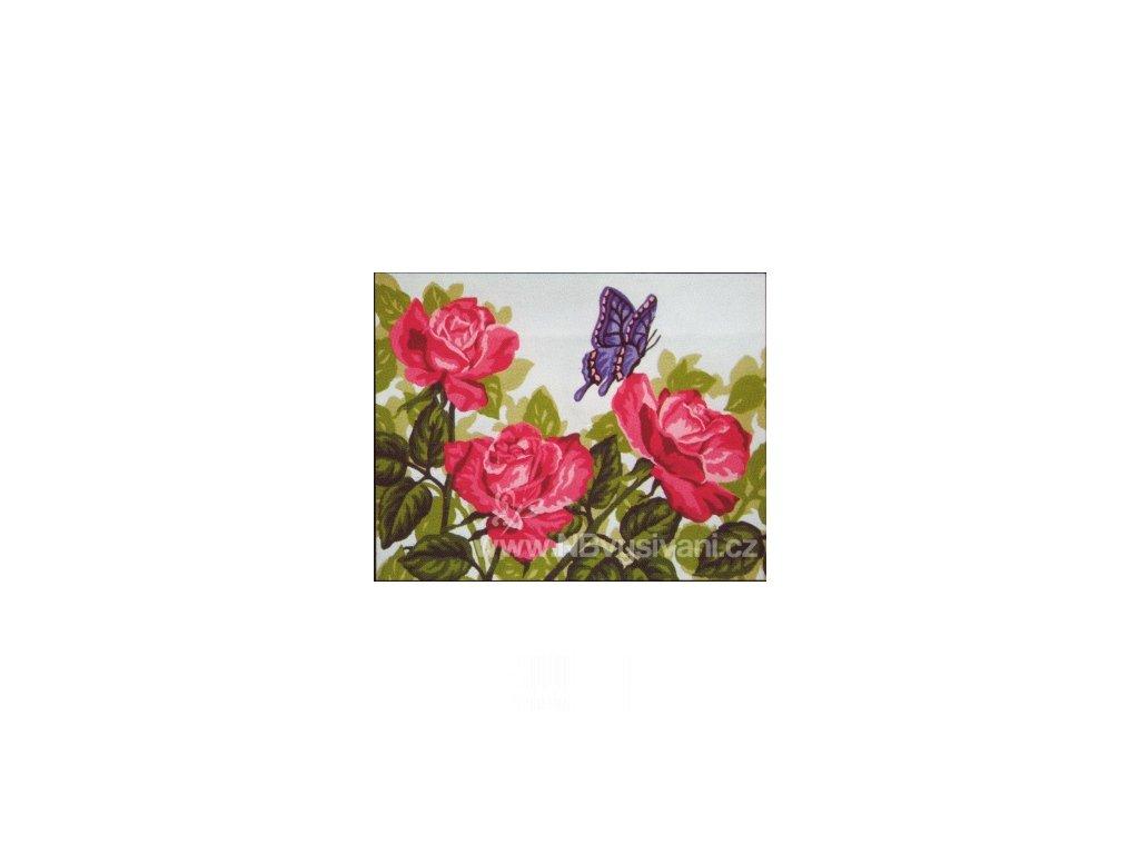 ADA6.244 Růže a poletující motýl