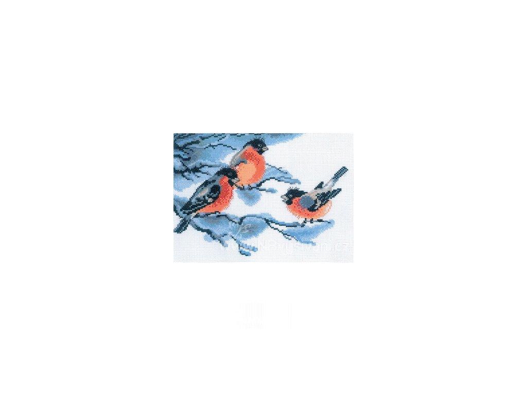 RT-M051 Ptáčci v zimě