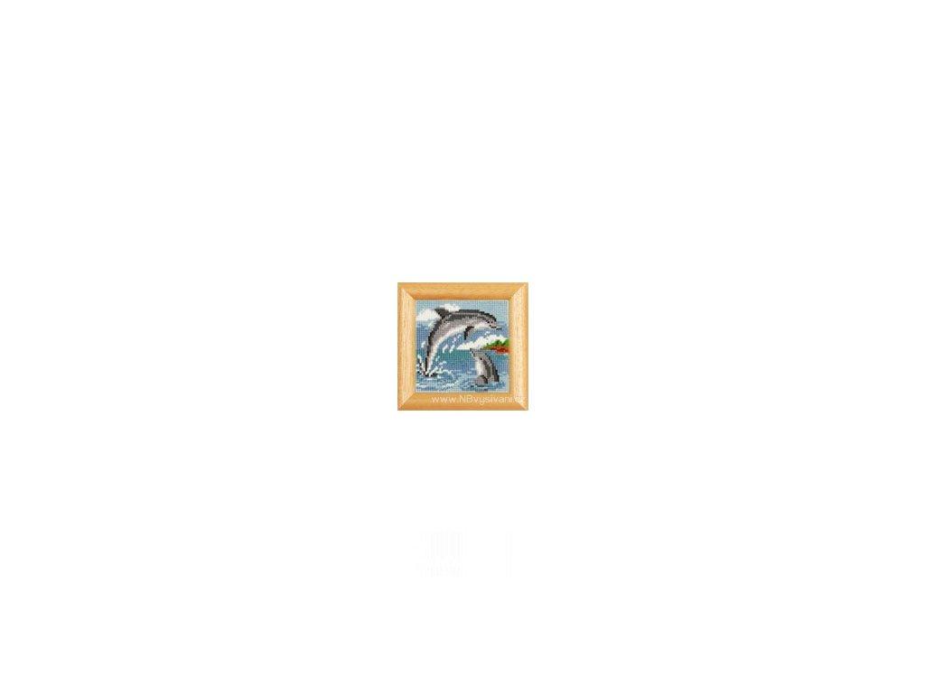 VE2002-40.391 Delfíni