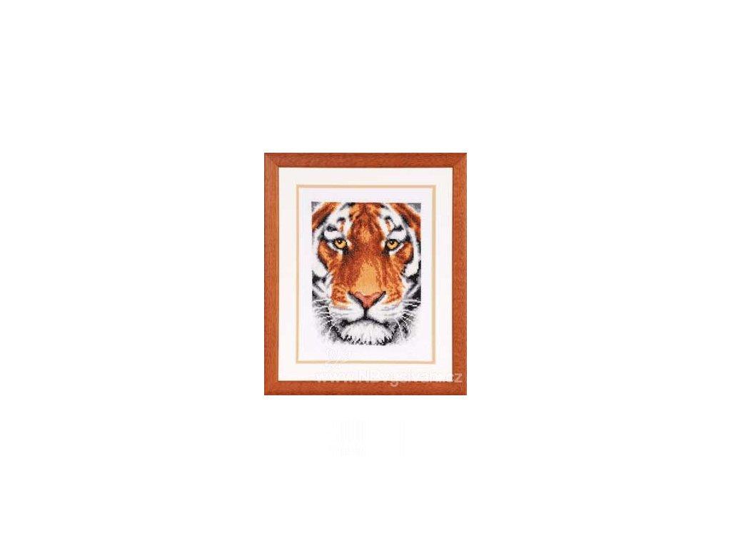 VE2002-70.071 Tygrův upřený pohled