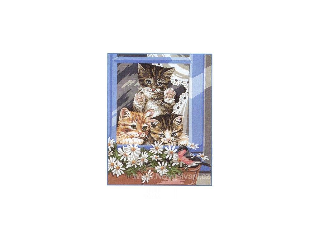 ARP988.0132.67 Koťata v okně