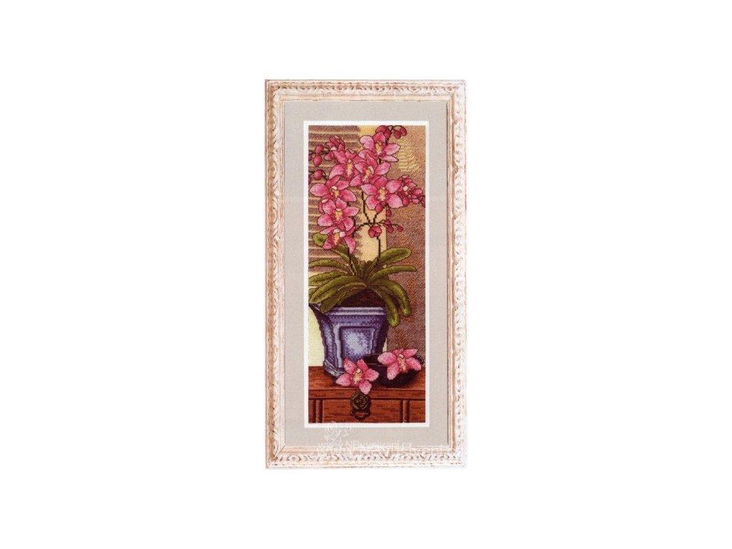 ARP988.6418.12 Orchidea (doprodej)