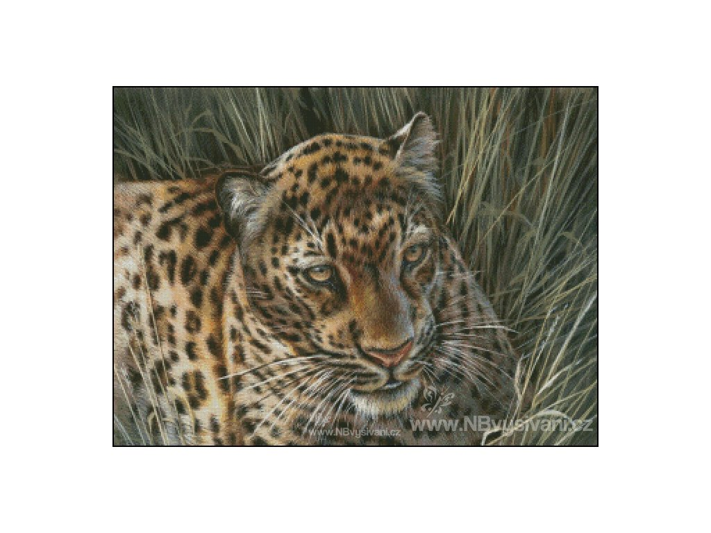 Leopard in the Grass (Aida 18ct)