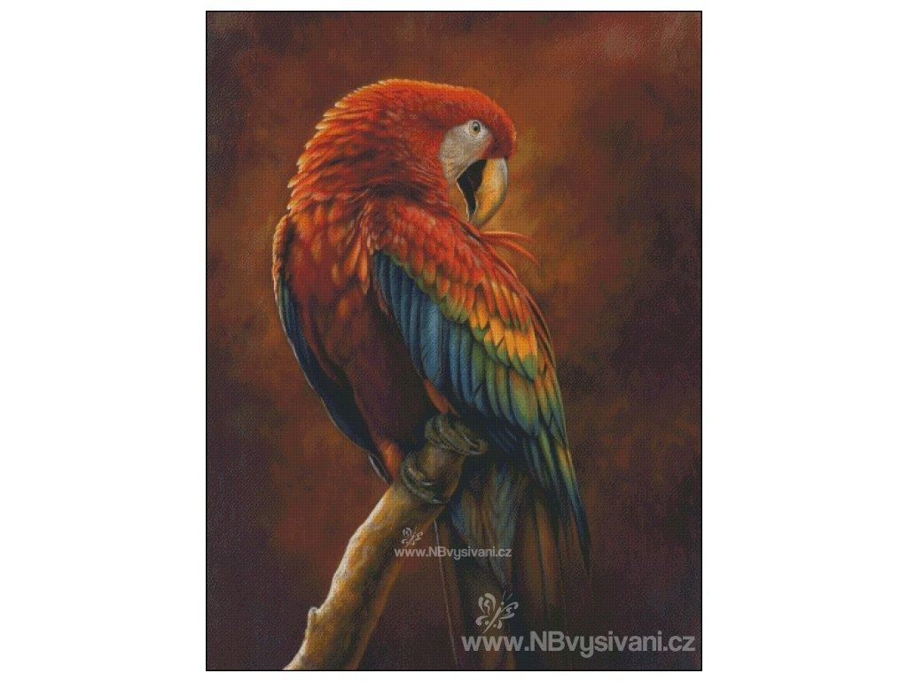Scarlet Macaw Preening (Aida 18ct)