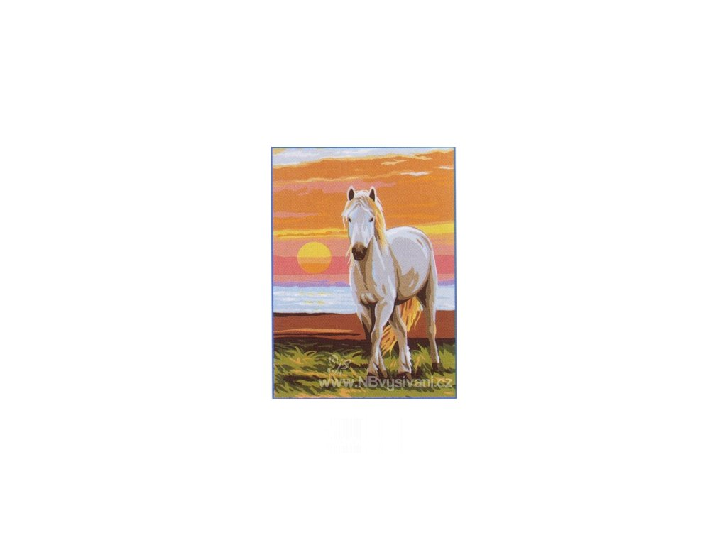 ARP988.0131.16 Bělouš při západu slunce