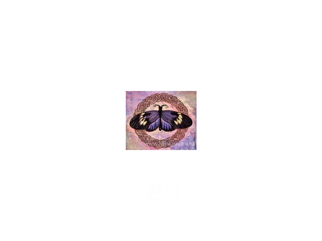 HAED - QS Celtic Butterfly Two (Aida 18ct)