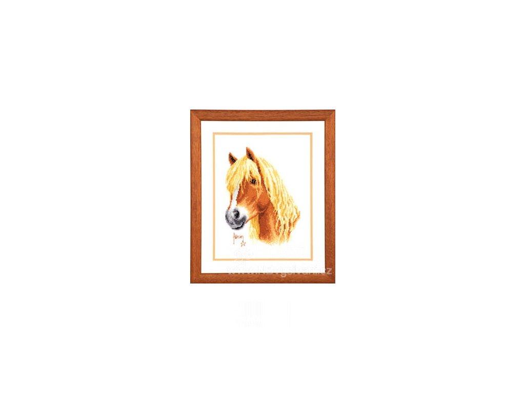 VE2002-70.036 Hlava koně
