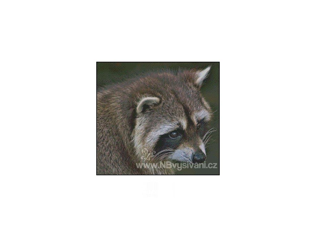 Sneaky Raccoon (předloha)