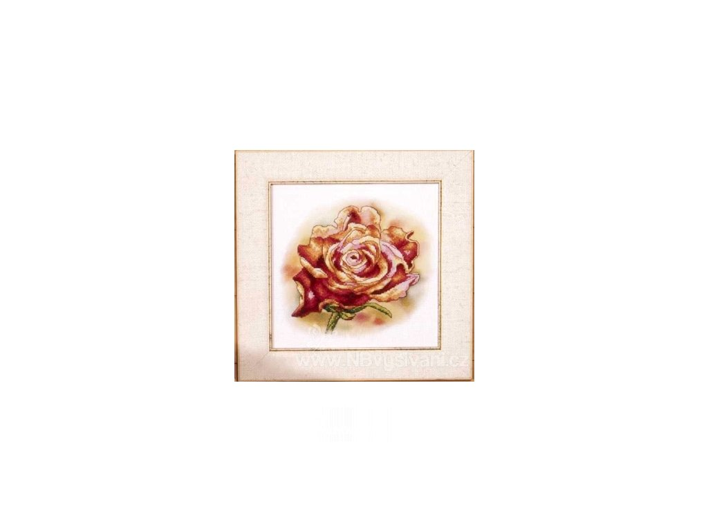 OR8196 Trilogie růže III.