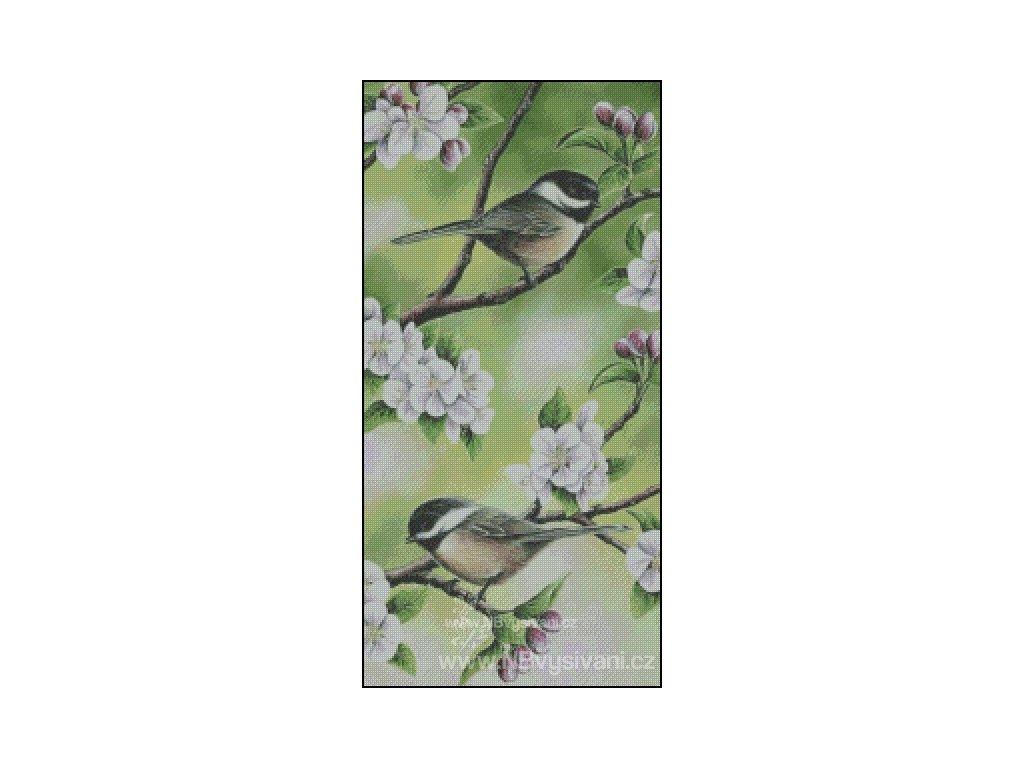 Among the Blossoms (předloha)