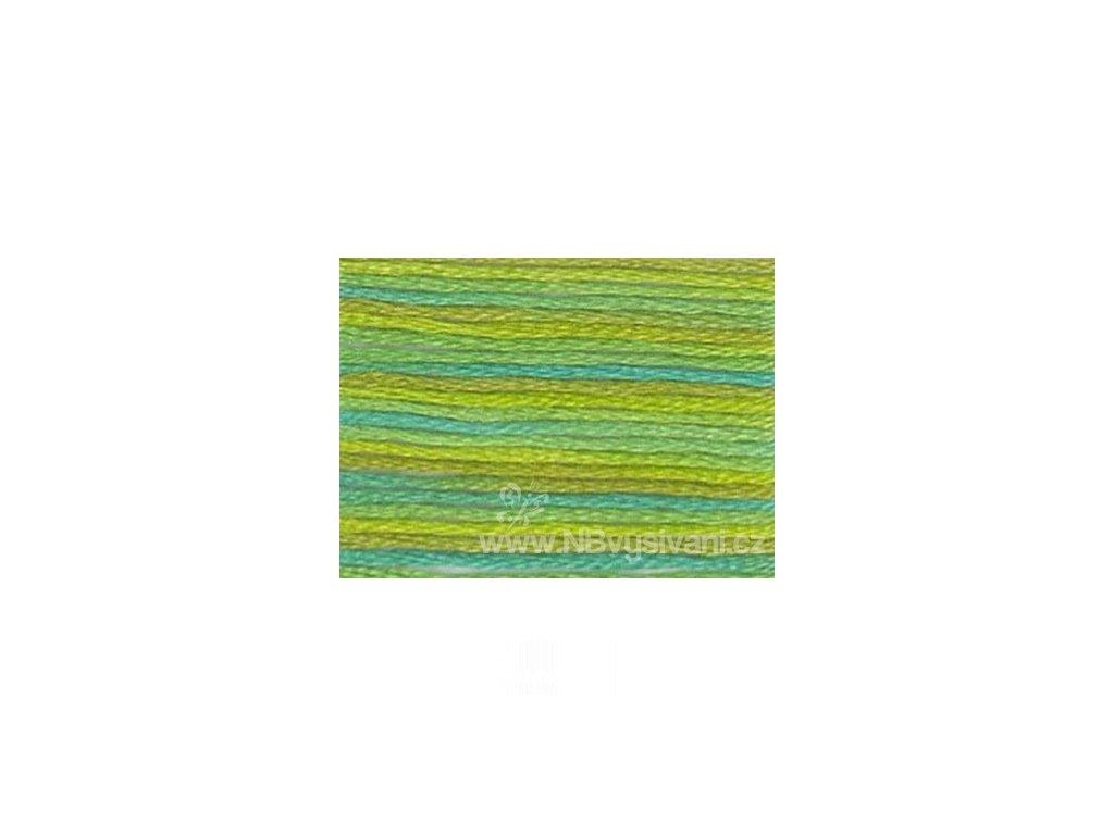 DMC4050 Mouliné Color Variation - Roaming Pastures (8m)