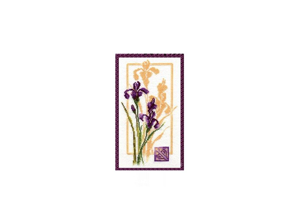 ZR-BR003 Irisy a jejich odraz