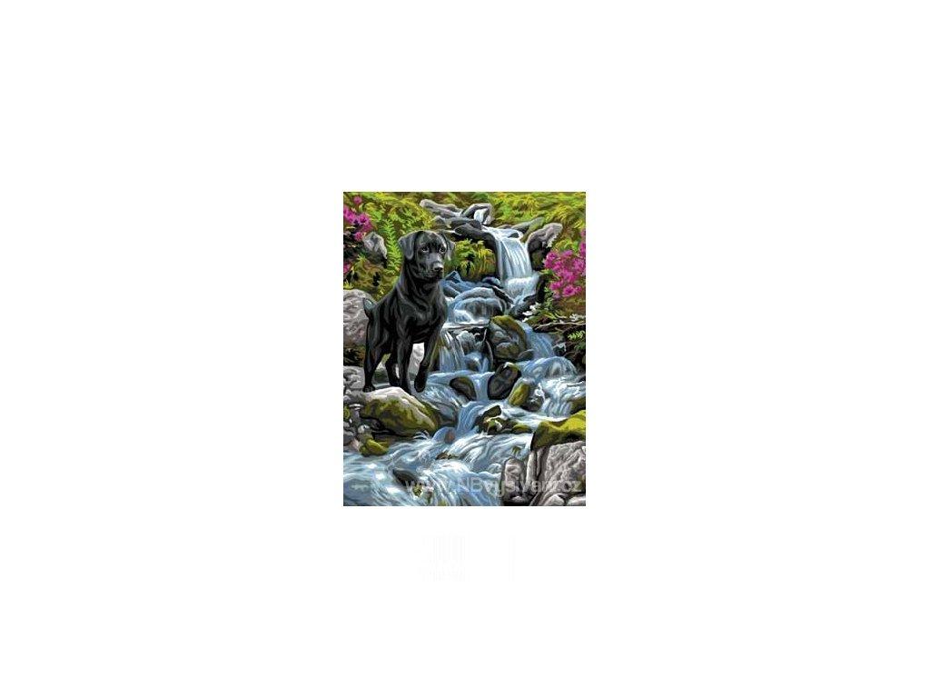 ARP988.0132.173 U vodopádu
