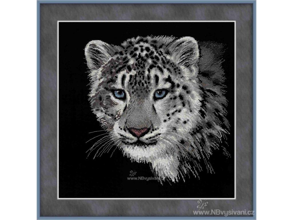 RIO100/022 Sněžný leopard