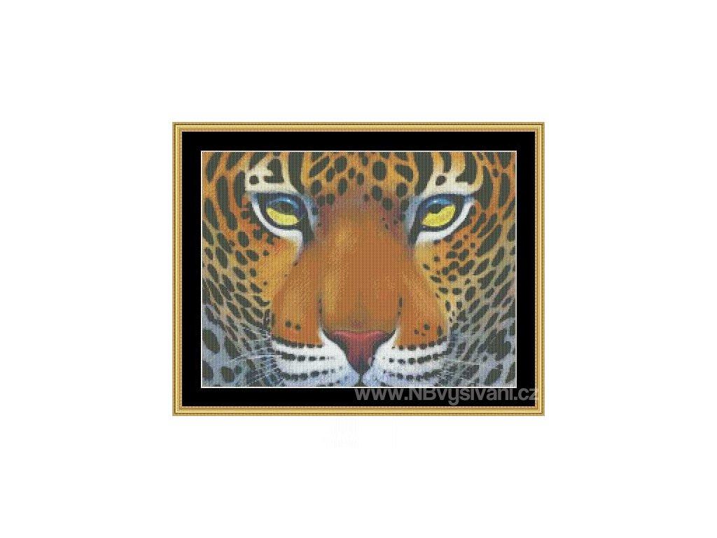 MS-CLB05 Leopard (Aida 18ct)