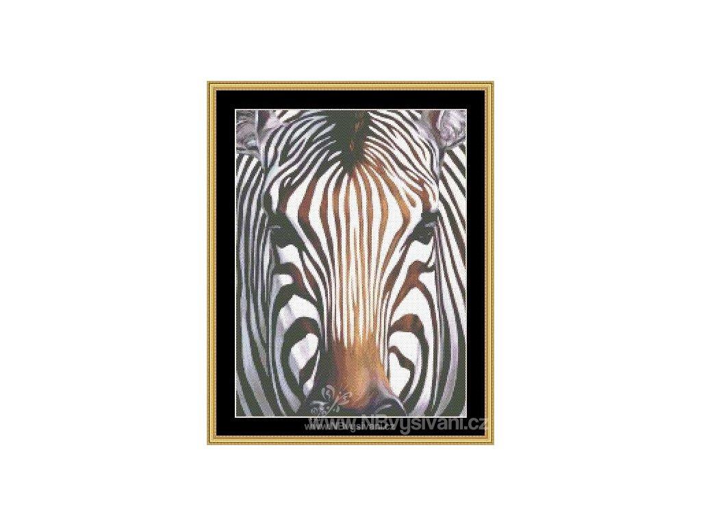 MS-CLB11 Zebra (Aida 18ct)