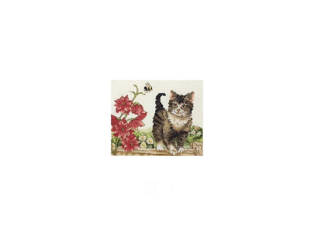 A-PCE591 Kočka a květiny (doprodej)