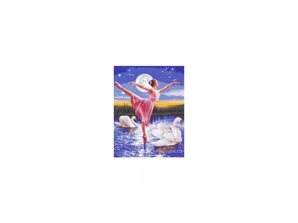 ARP988.0142.505 Balet mezi labutěmi