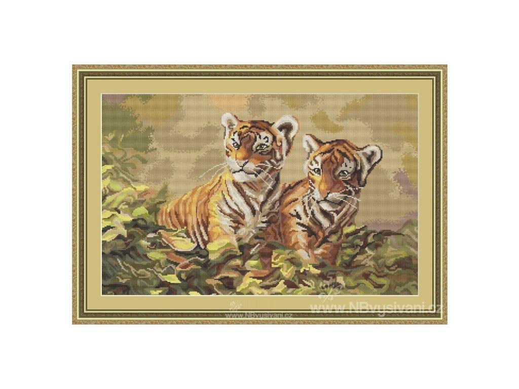LUC-B442 Malí tygříci