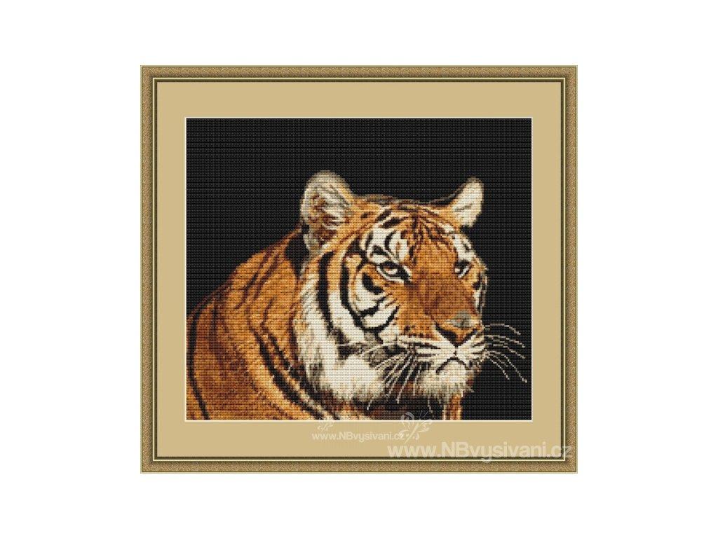 LUC-B334 Tygr