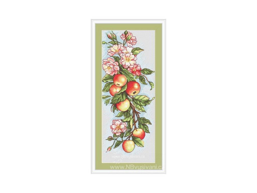 LUC-B211 Květinová kompozice s jablky