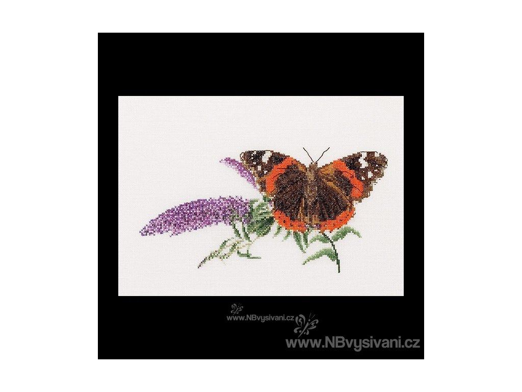 THG-436A Motýlek na květu (Aida)